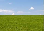Mezőgazdaságilag nem művelt terület