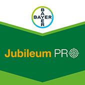 Jubileum Pro Csomag